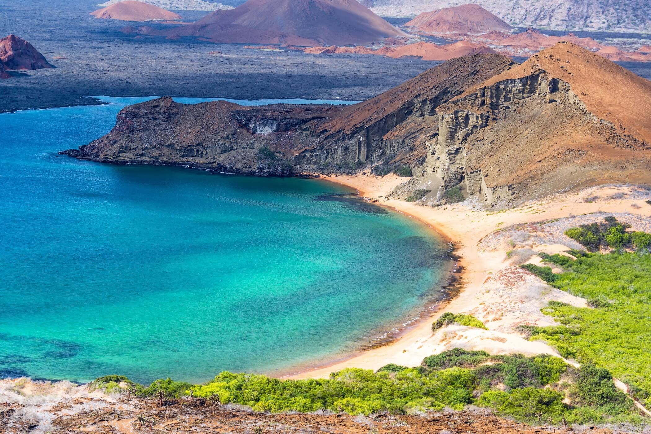 Discover the Galapagos Islands
